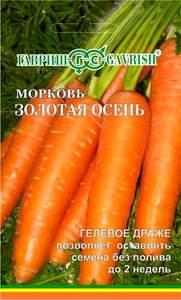 Сорт моркови Золотая осень